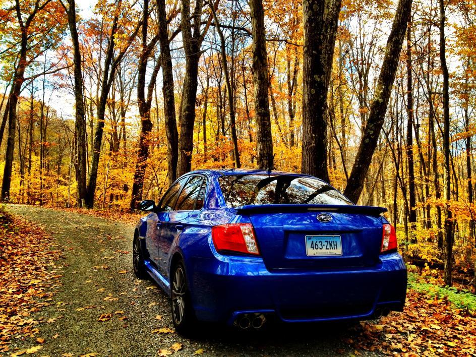 Fall 2012 drive