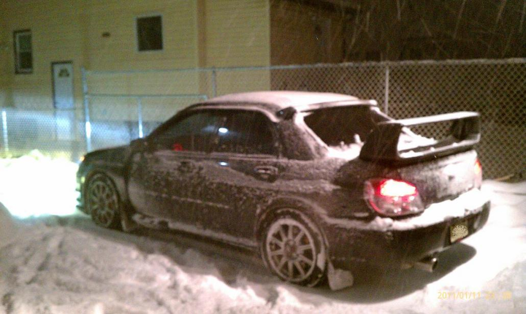 SnowyRear.jpg
